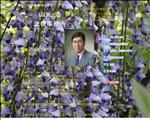 弁護士 山口 山元浩法律事務所  (下関・弁護士)